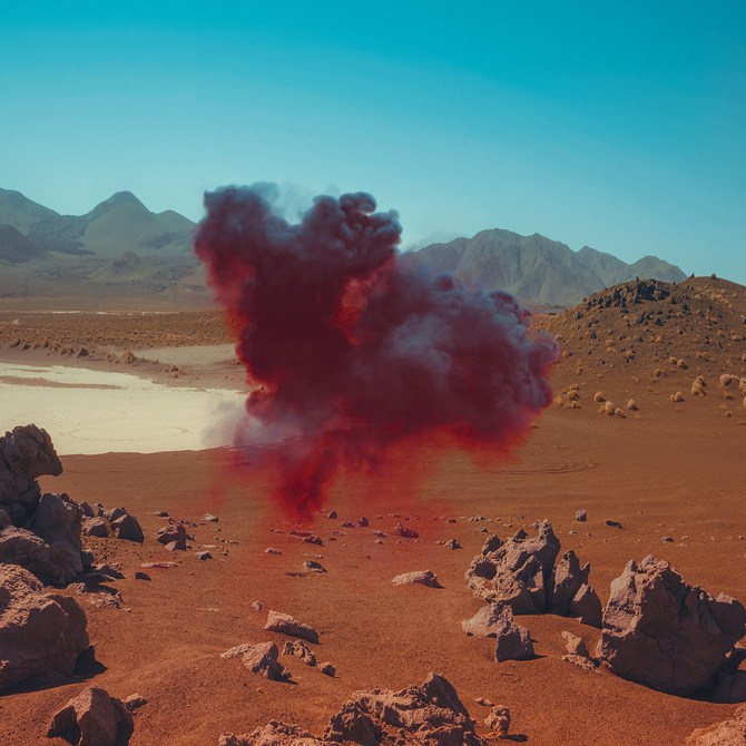2---Bonobo---Neil-Krug---Low-Res_670
